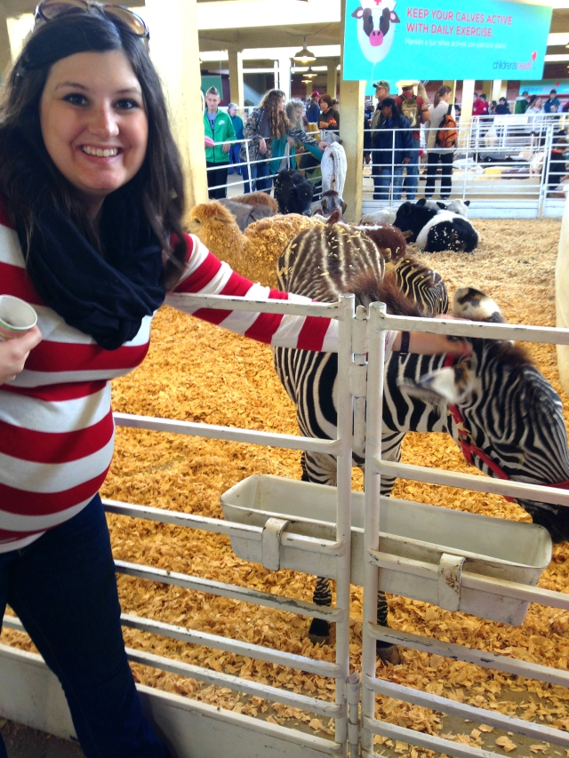 Alex petting zebra