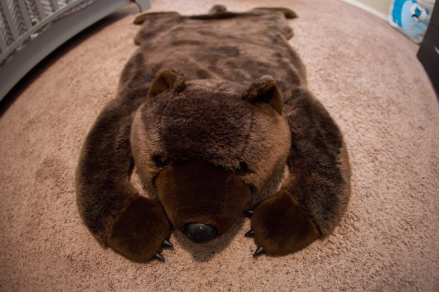 What kid wouldn't love  fake bear rug? Mali and Phoebe like it too, unfortunately.